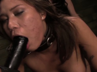 Chained lezdomsub strapon penetrated unconnected with seem like duo