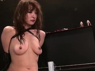 Absolutely free divergent bdsm fetish stories